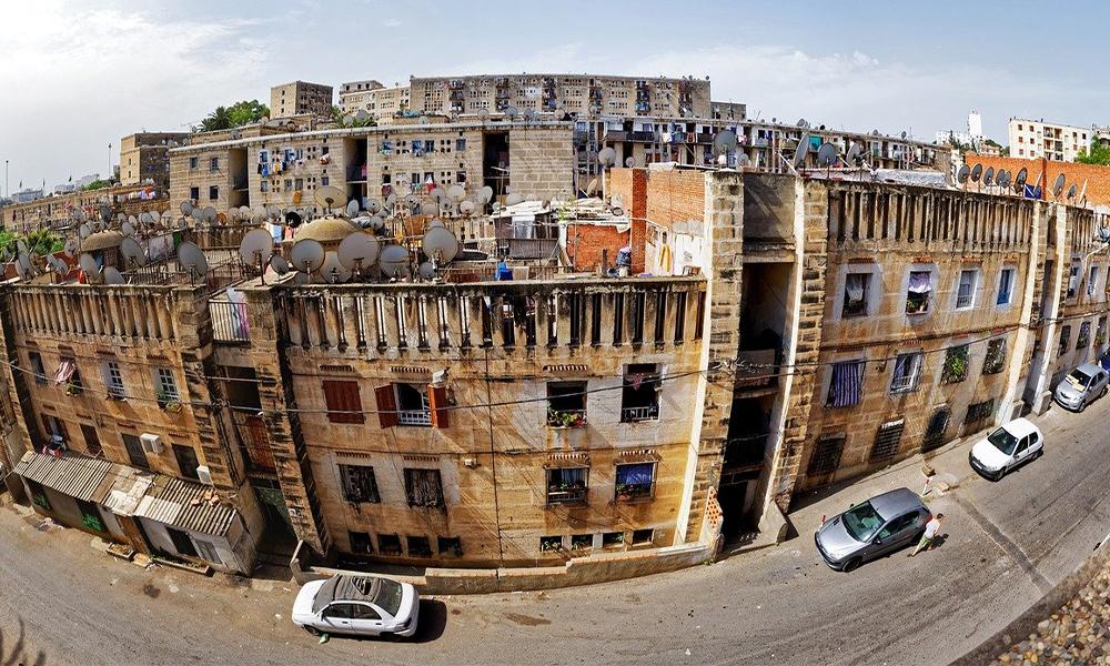 Cezayir Pazar Araştırması