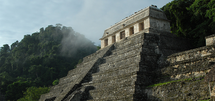 Meksika Pazar Araştırması