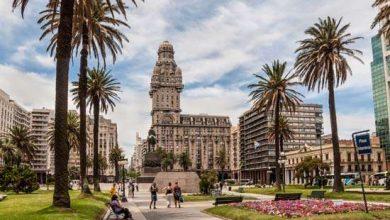 Uruguay Pazar Araştırması