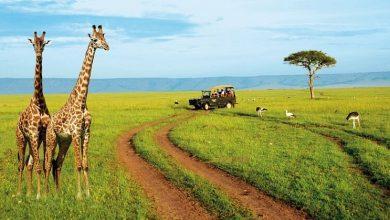 Kenya Nairobi B2B