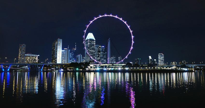 Singapur Pazar Araştırması